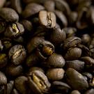 coffee beans uc davis