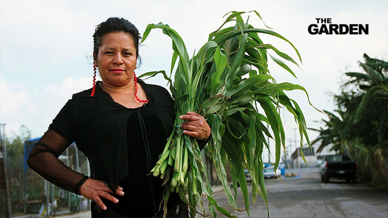 Woman holds produce from community farm.